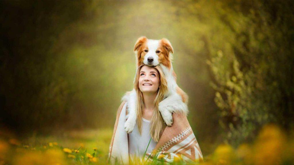 ТОП 8 самых дружелюбных пород собак